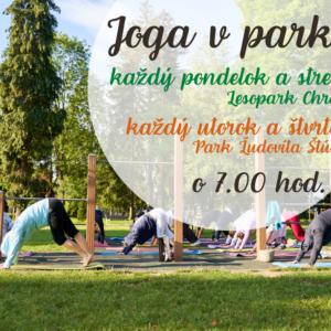 Pozvánka na Jogu v parku - Lesopark Chrasť